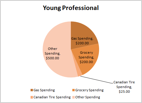 Young Professional Pie Chart