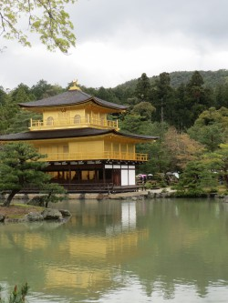 Kyoto Palace